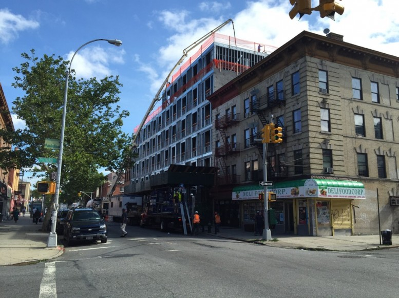 75 Ralph Avenue