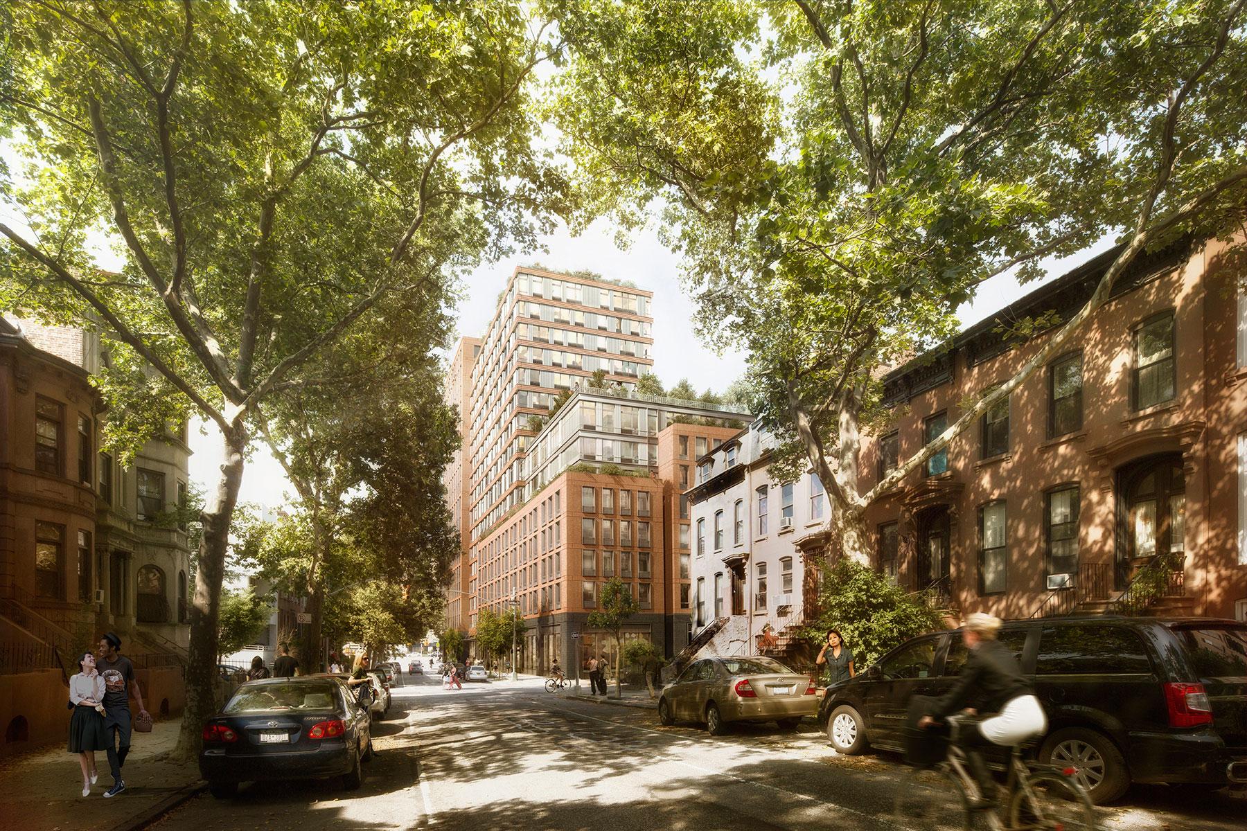 535 Carlton Avenue