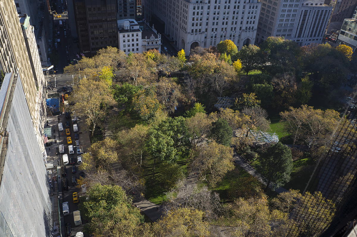 Looking down into Madison Square Park from the roof of 212 Fifth Avenue