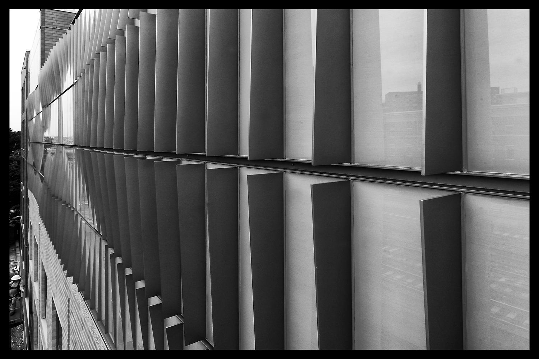'Park Avenue Artwall.' Photo: GDSNY