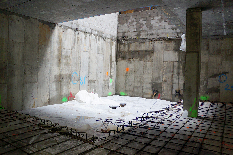 A future basement garden.