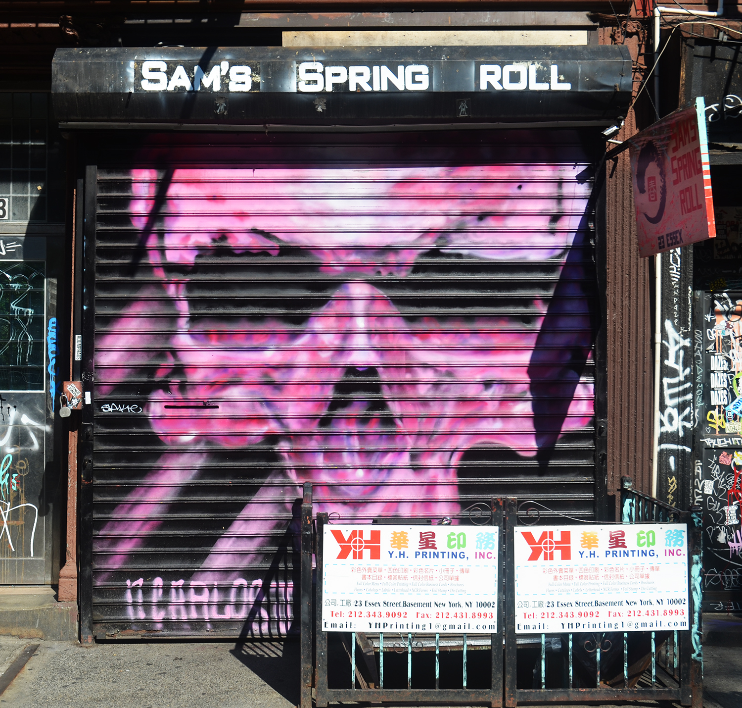 100 Gates - Sam Spring Roll at 23 Essex Street by N. Carlos J