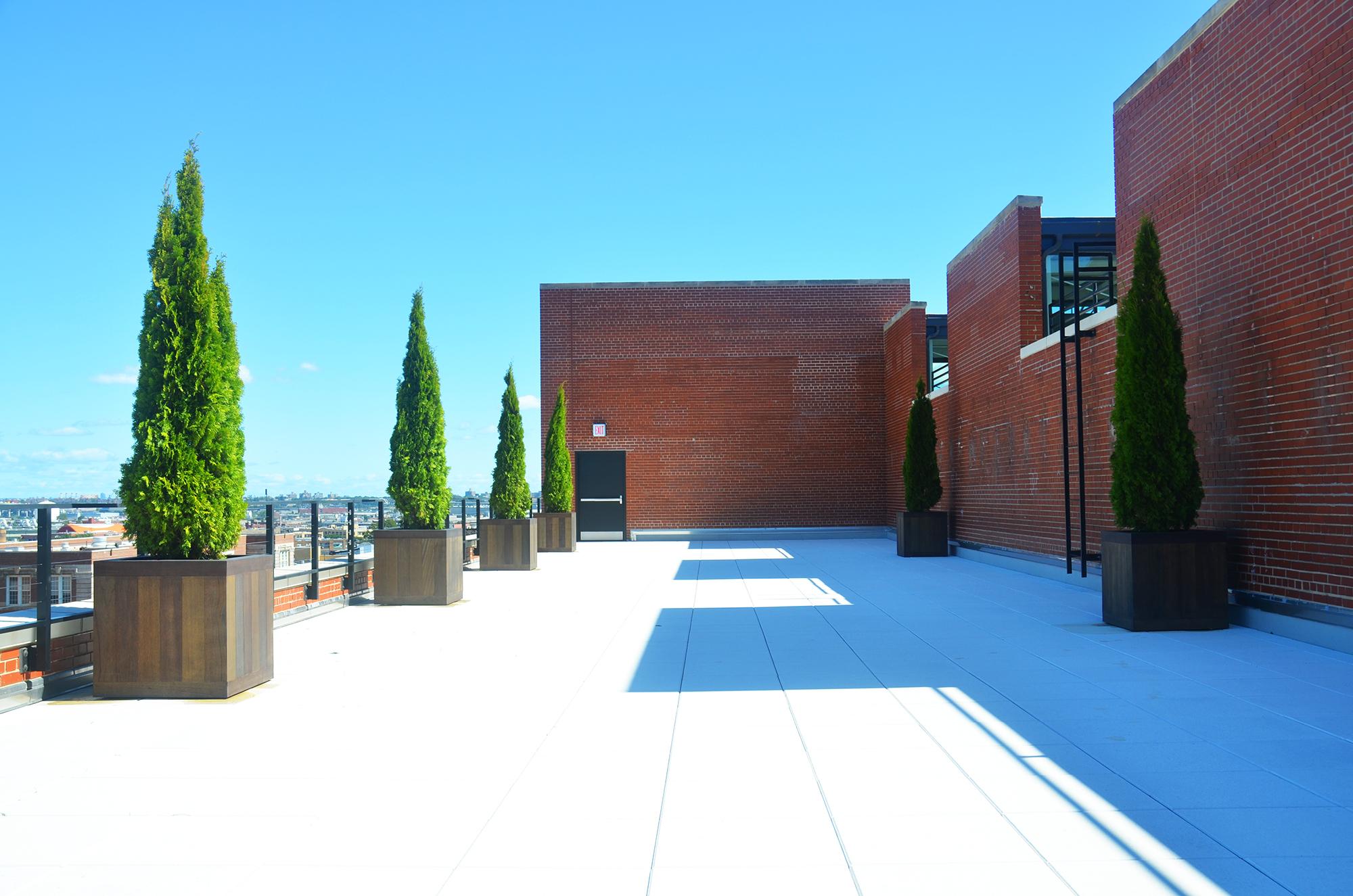 Terrace atop 95 Evergreen Avenue