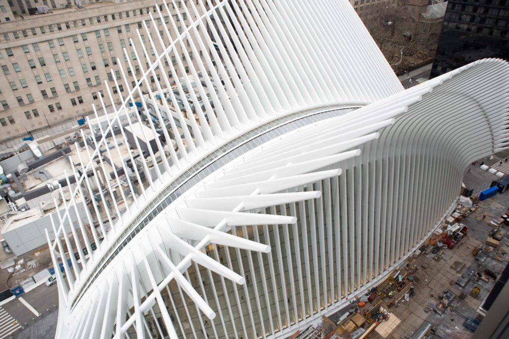Oculus from 3 World Trade Center, image by Andrew Campbell Nelson