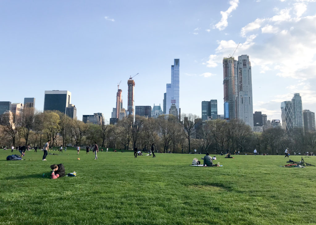 View from Sheep Meadow