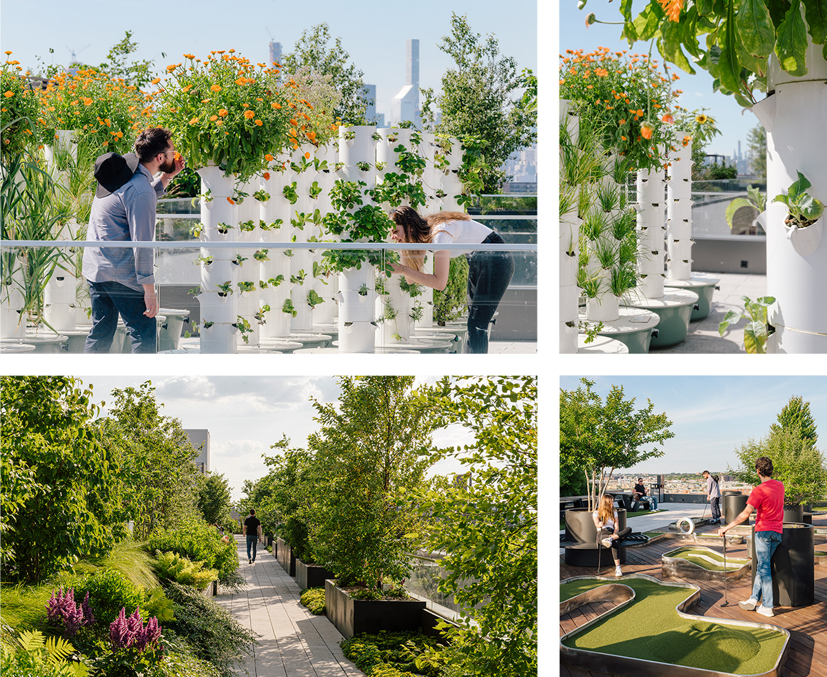 The Denizen's hydroponic urban farm (top) and rooftop recreational areas (bottom) (Photo: ODA)