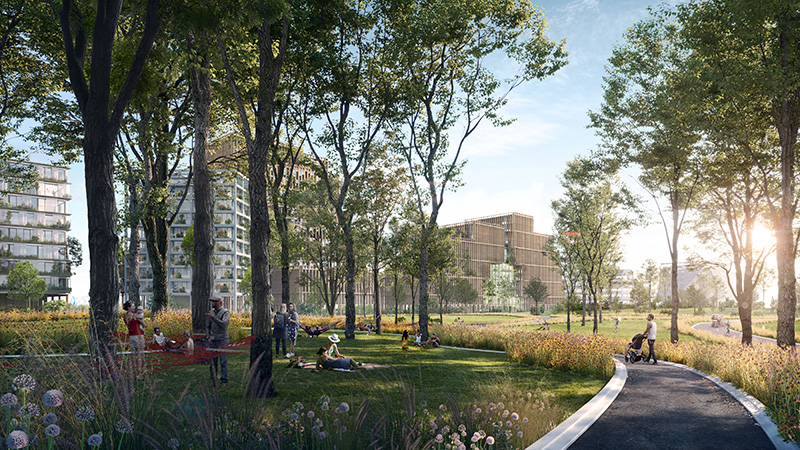 Rendering of Hammock Grove - WXY architecture + urban design_bloomimages