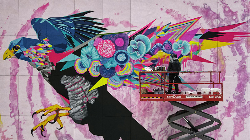 Falcon Dreaming mural by Vexta - Photo by Ben Laujpg