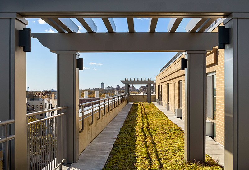 View of roof deck at Edwin's Place (7 Livonia Avenue) - Courtesy of Francis Dzikowski